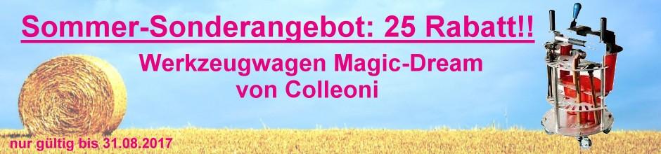 Banner 19 Magic Dream