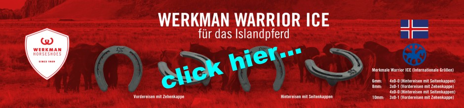 Banner 2 Werkman-Warrior-Ice